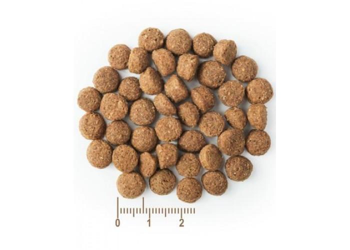 BonaVentura JUNIOR SELECT «Индейка/утка с картофелем» 1,5 кг